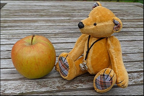 Trevor the apple bear